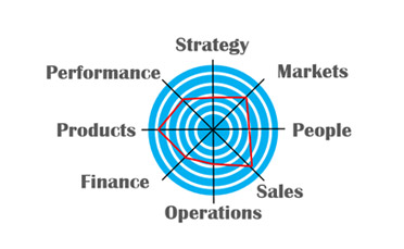 Business and Lean Assessments