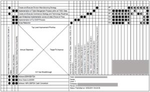 Strategy Deployment 'X' Matrix Example