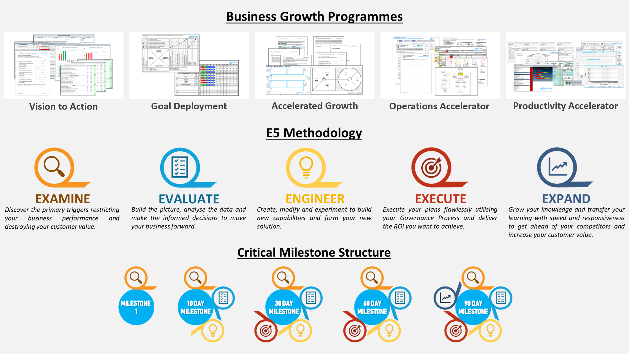 Business Growth Programme